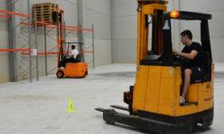 Sobre el arraigo laboral – Aspectos y consideraciones